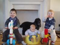 The boys on their trikes